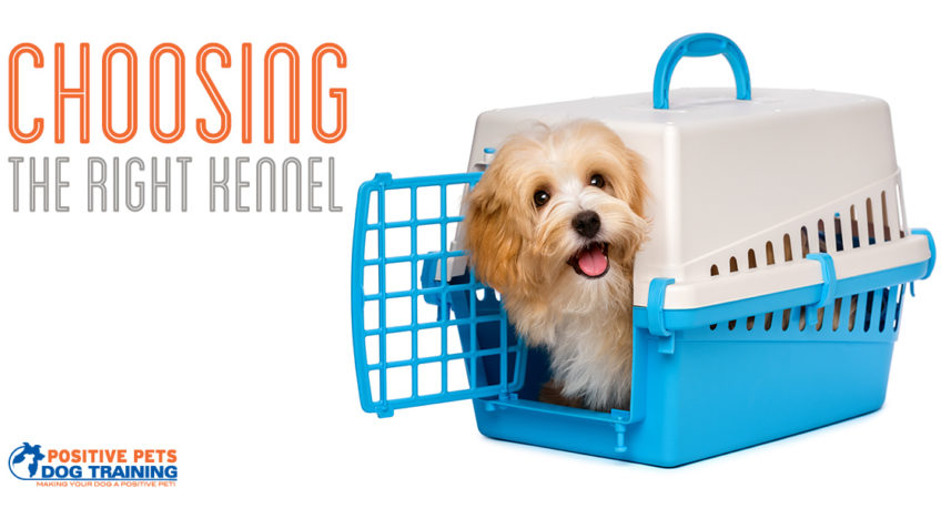 Choosing the right kennel for your dog.