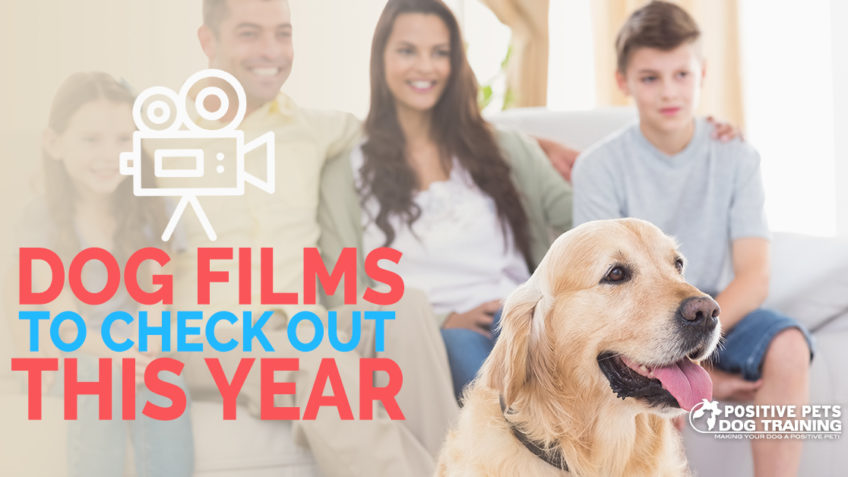Dog Films To Check Out This Year