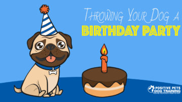 Throwing Your Dog a Birthday Party